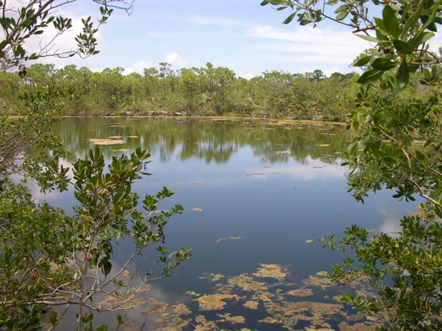 National Key Deer Wildlife Refuge